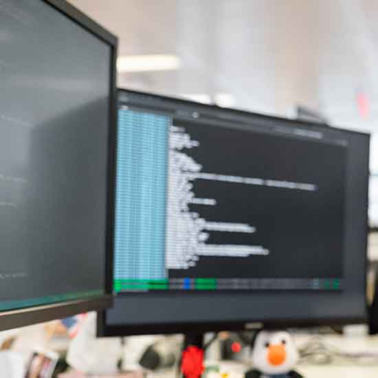 Lo sviluppatore software